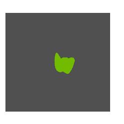 Stážista ve Weboně
